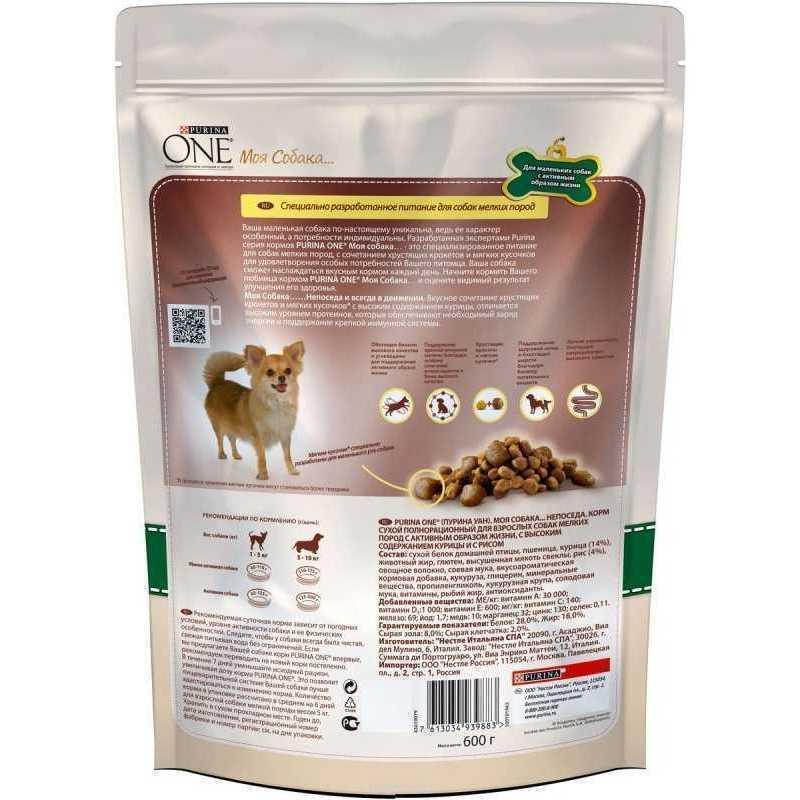Чойс корм для собак (1st choice): описание, состав, отзывы, цена и где купить | petguru