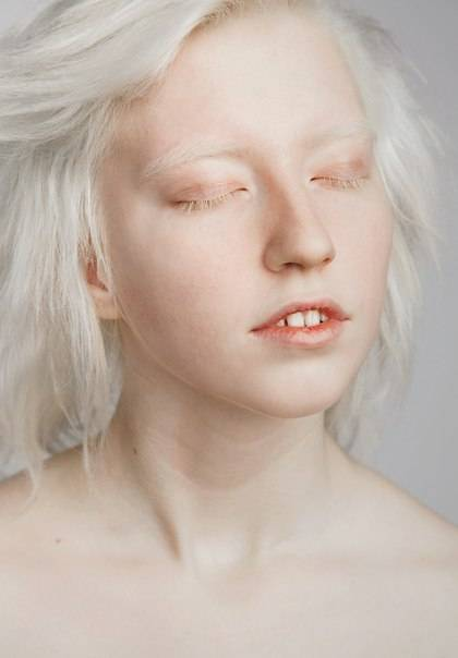 Доберманы альбиносы: индивидуальные особенности, характер и привычки
