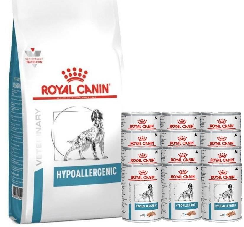 Роял канин гипоаллергенный для собак мелких пород: состав корма, отзывы