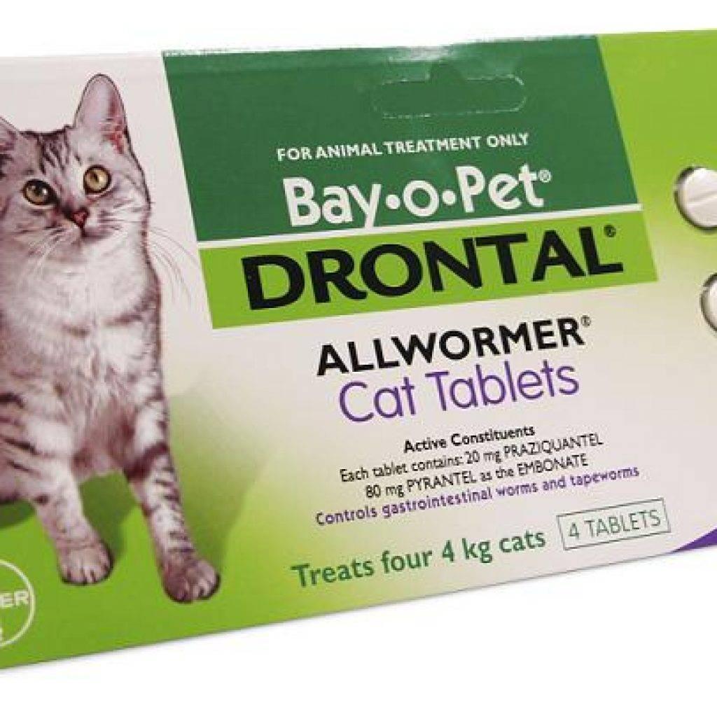 Дронтал для кошек и котов