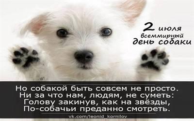 Международный день защиты животных | дата, какого числа