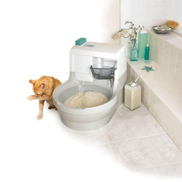 Туалет для кошек самоочищающийся | лоток, цена, купить, отзывы