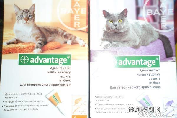 Advantix (адвантикс)