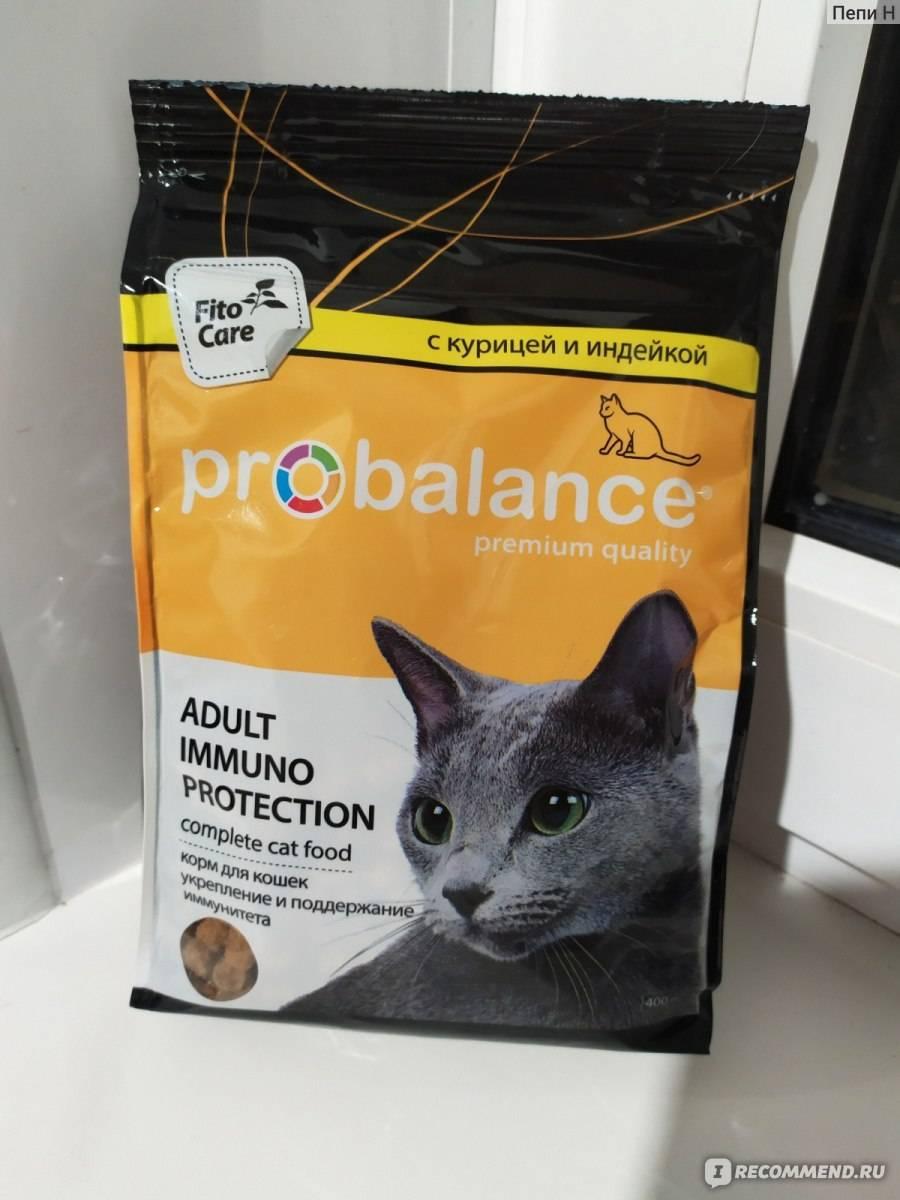 Корм для кошек пробаланс: отзывы и обзор состава