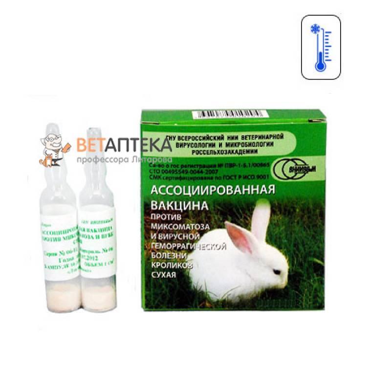 Ассоциированная вакцина для кроликов инструкция (фото и видео)