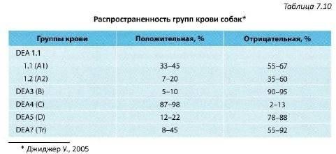 Анализ крови у кошек: расшифровка