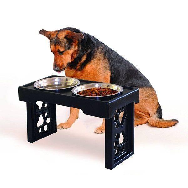 Миски для собак и другие аксессуары: подставка и стойка для кормления