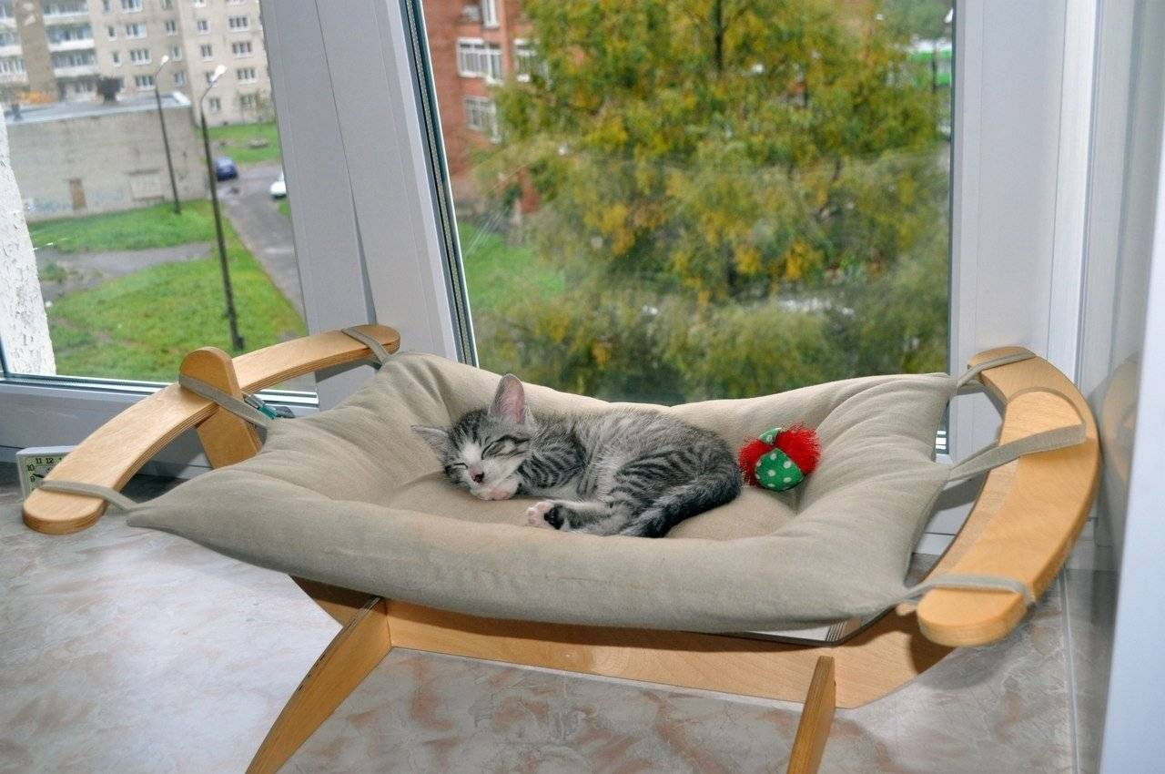Лежанка для кошки своими руками: идеи, выкройки, материалы, рекомендации