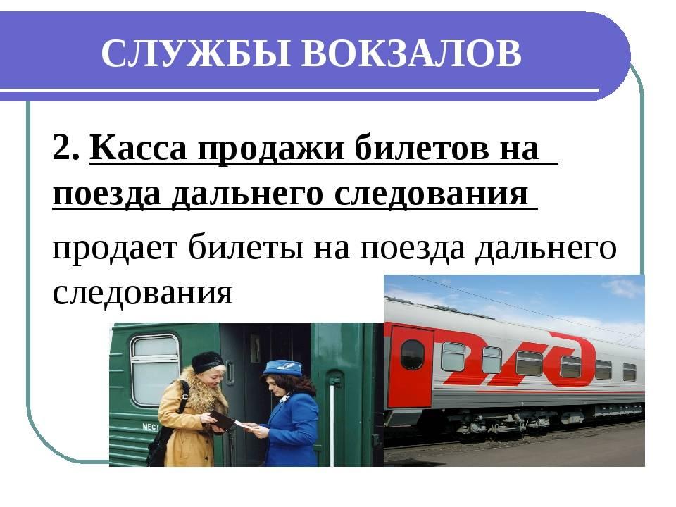 Как певезти кошку в поезде по россии ржд: правила, прививки