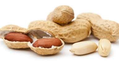 Орехи, семечки и сухофрукты при панкреатите