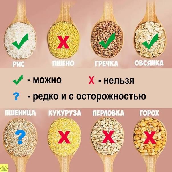 Диета при заболевании печени   меню и рецепты диеты при заболеваниях печени   компетентно о здоровье на ilive