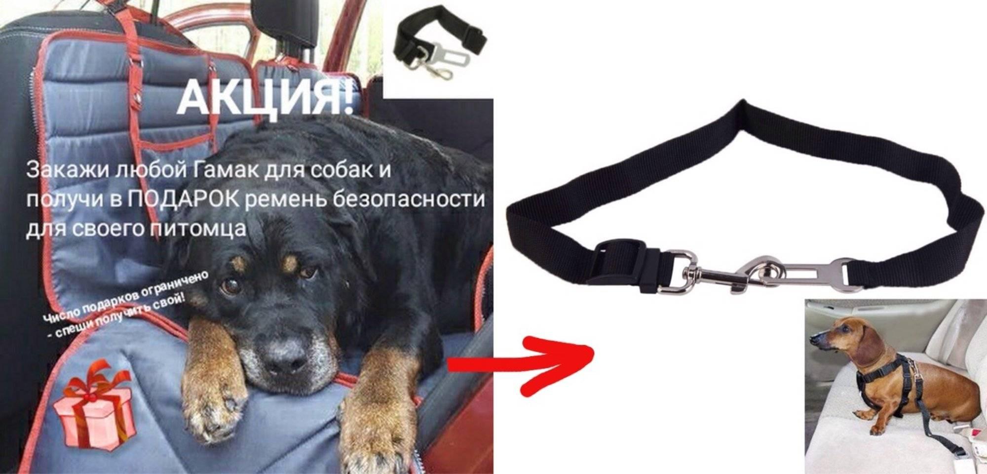 Как сшить автогамак для собаки самим