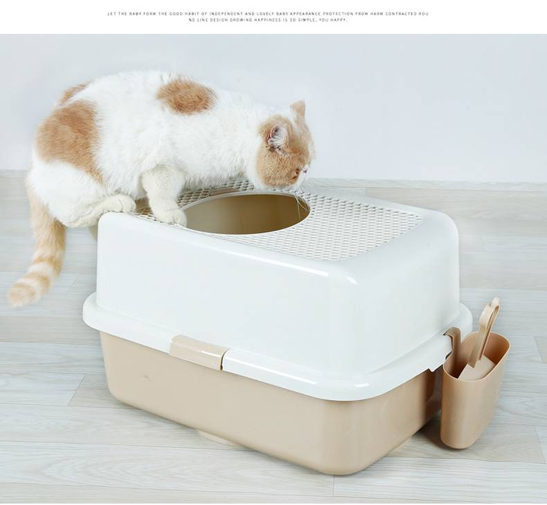 Как выбрать туалет для кошки - рейтинг 10 лучших лотков 2021 года