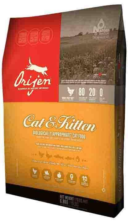 Можно ли давать кошкам сухой корм: правда и мифы