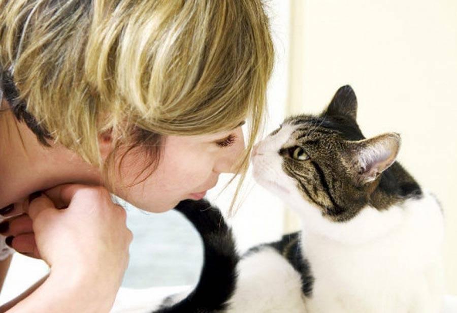 Почему кошки приносят пойманных мышей и птиц хозяевам - gafki.ru