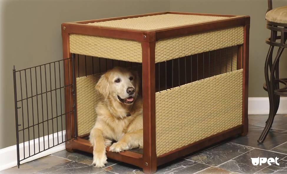 Как отучить собаку грызть мебель?