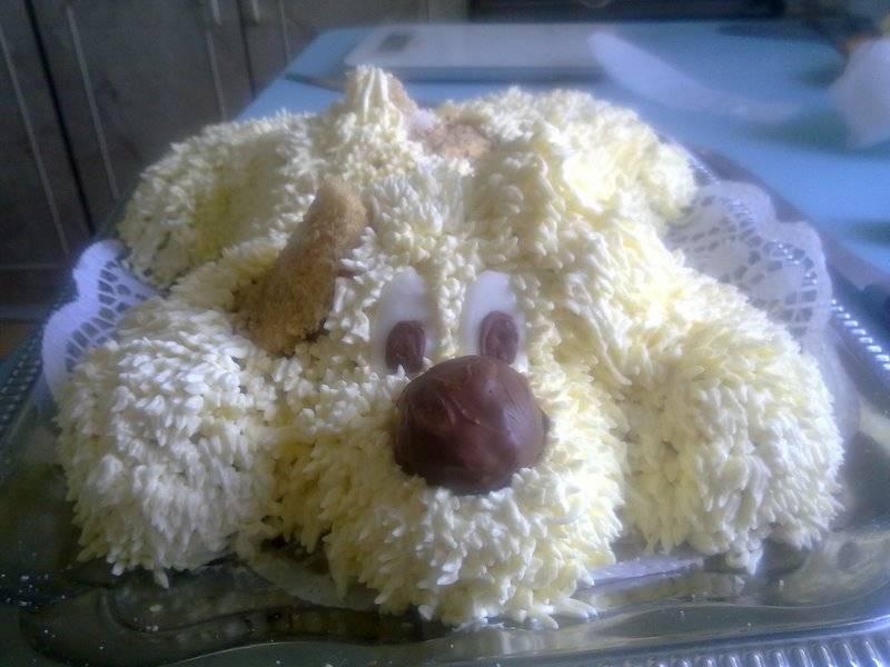 Как сделать торт для собаки на день рождения