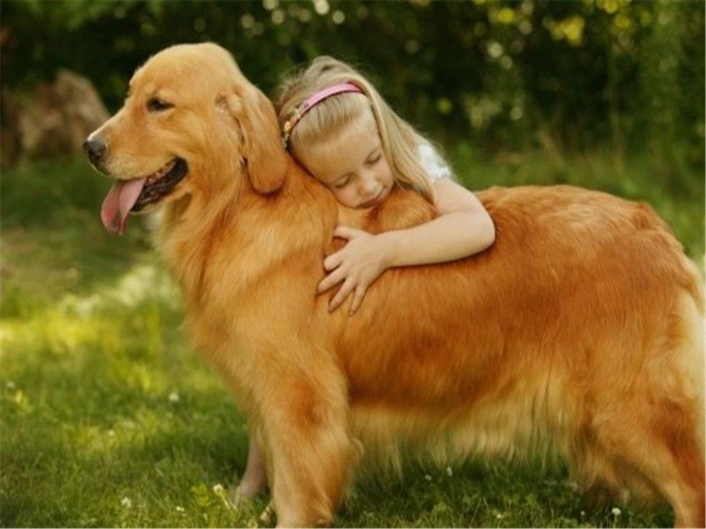 Топ самых лучших собак для детей