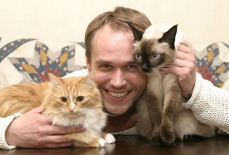 350+ красивых кличек для котов мальчиков, красивые и легкие имена для котов и котят
