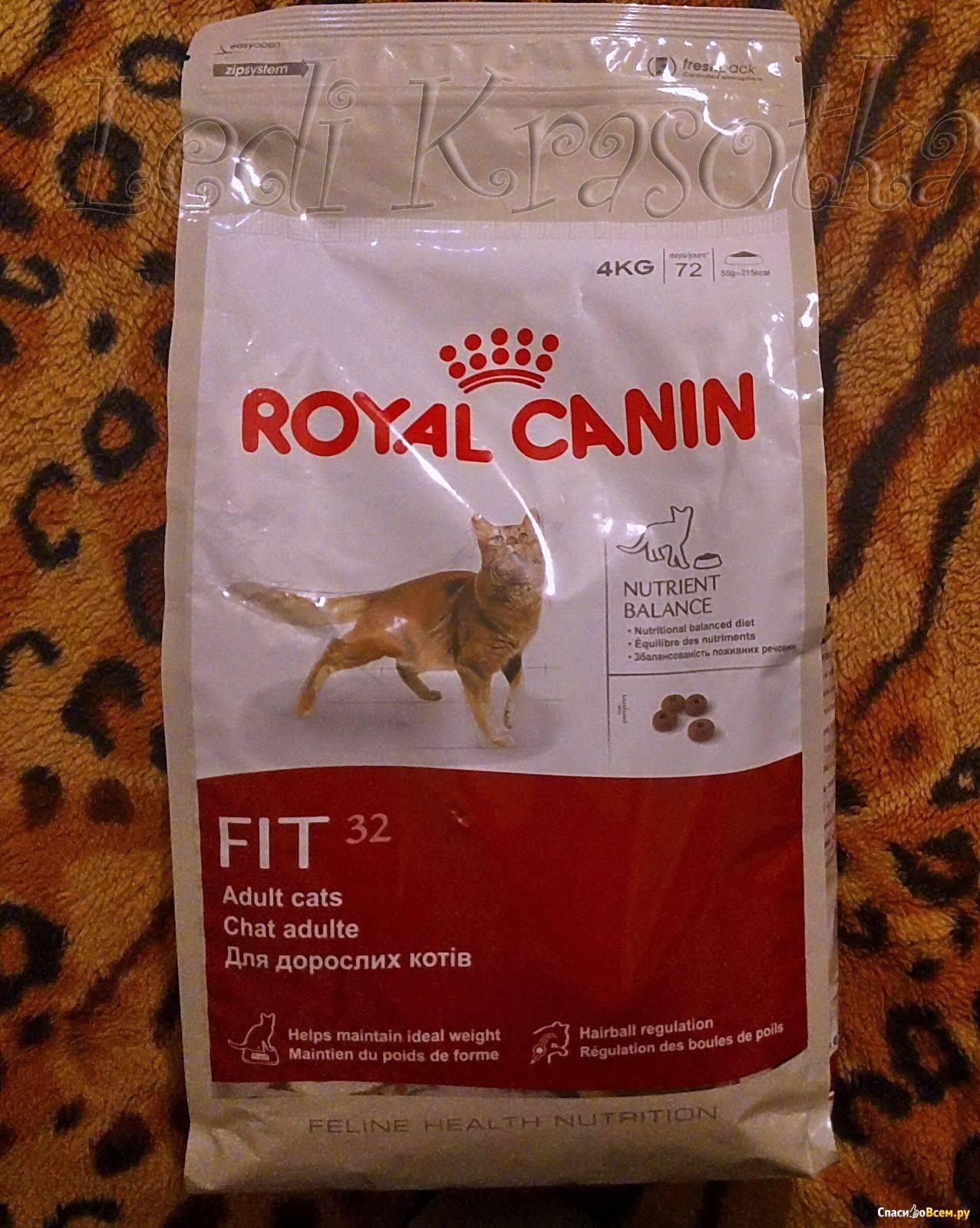 Корм для кошек роял канин (royal canin): отзывы, анализ состава