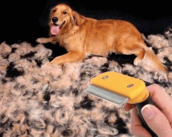 Фурминатор для собак: инструкция по использованию | отзывы, цена