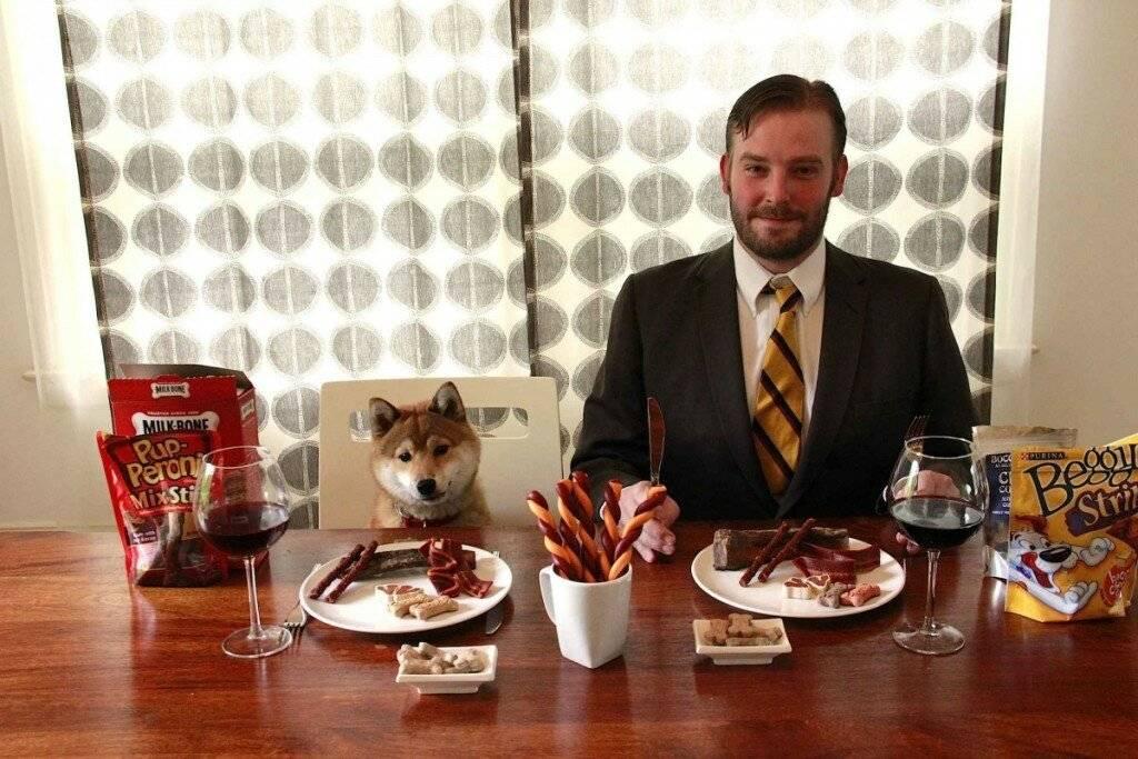 Как кормить собаку сухим кормом: рекомендации