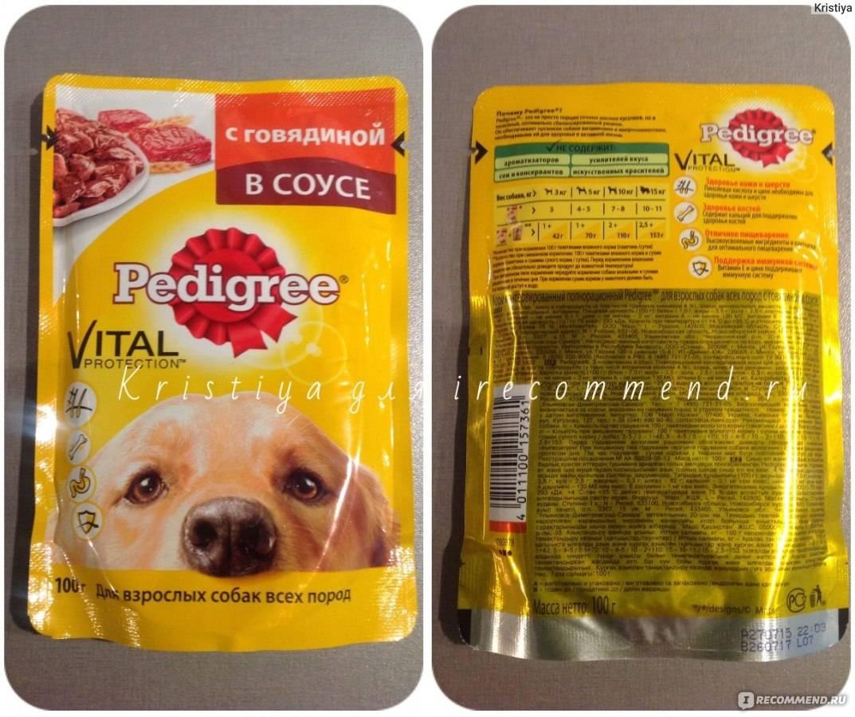 Самый популярный сухой корм для собак — педигри
