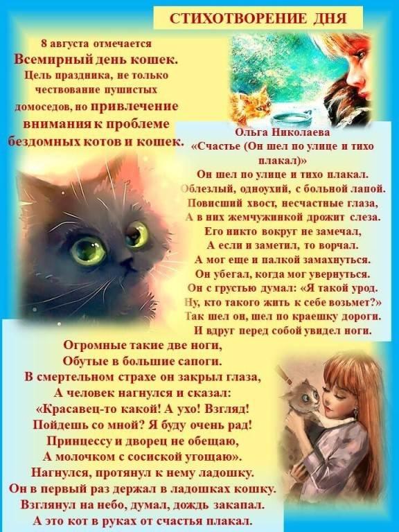 День кошек в россии в 2021 году: когда празднуют, какого числа отмечается
