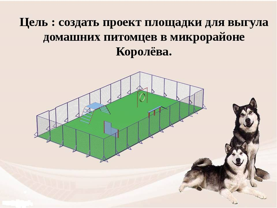 Правила выгула собак: закон рф 2020