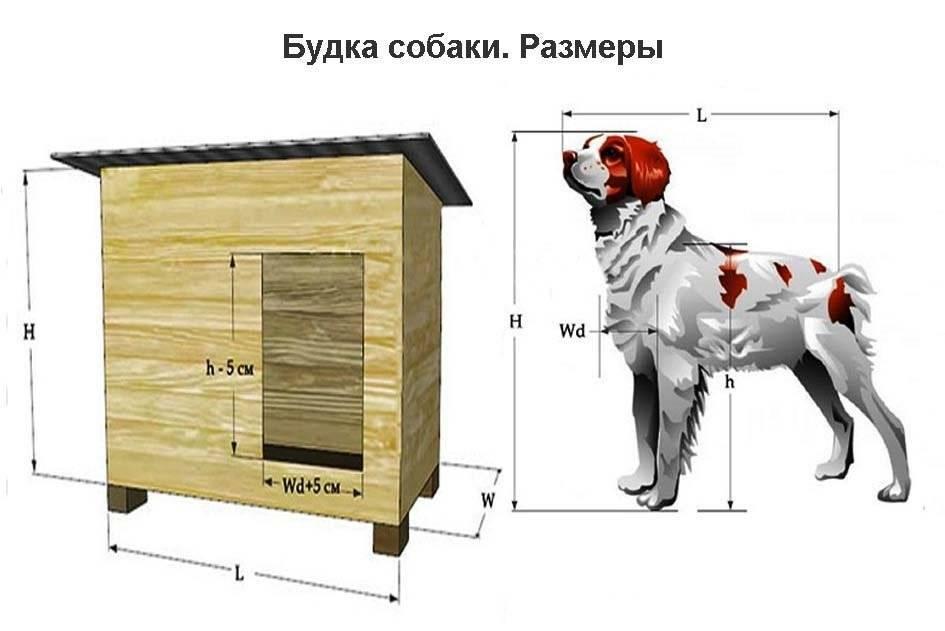 Как построить будку для немецкой овчарки своими руками: инструкция с чертежами и размерами