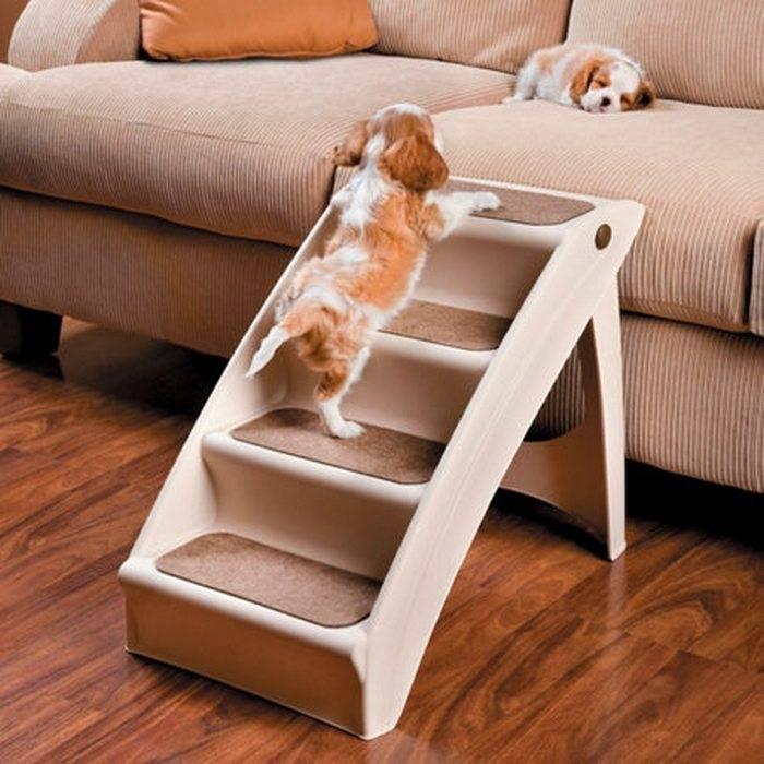 Лестница для собак мелких пород своими руками - bmi-rus.ru