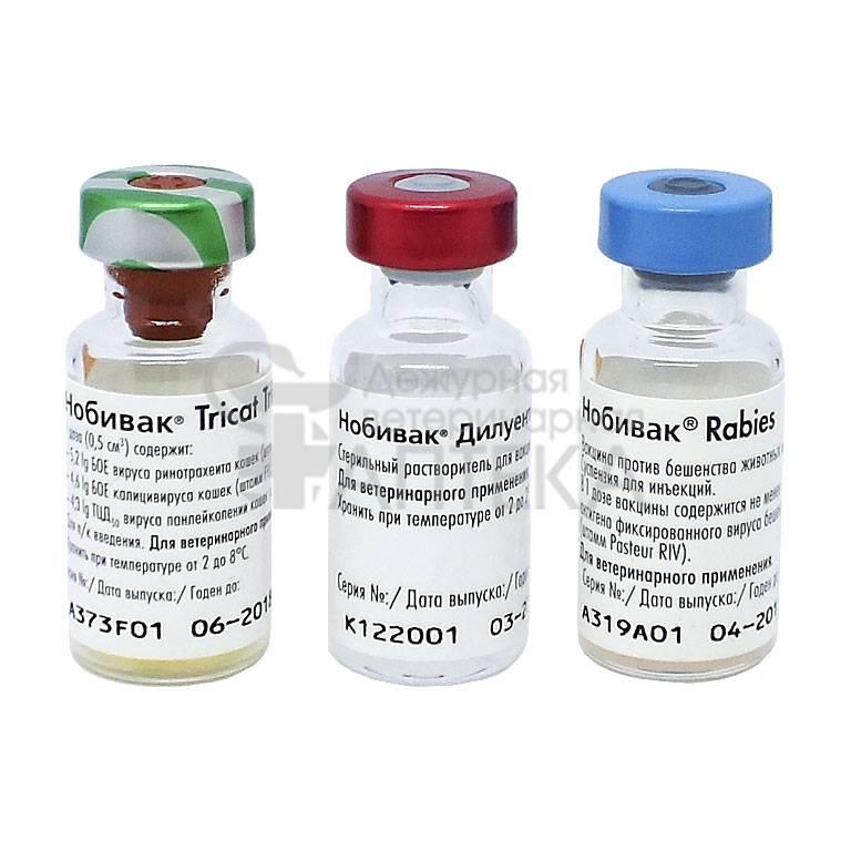 Вакцинация животных (собаки, кошки, хорьки, кролики). описание и цены