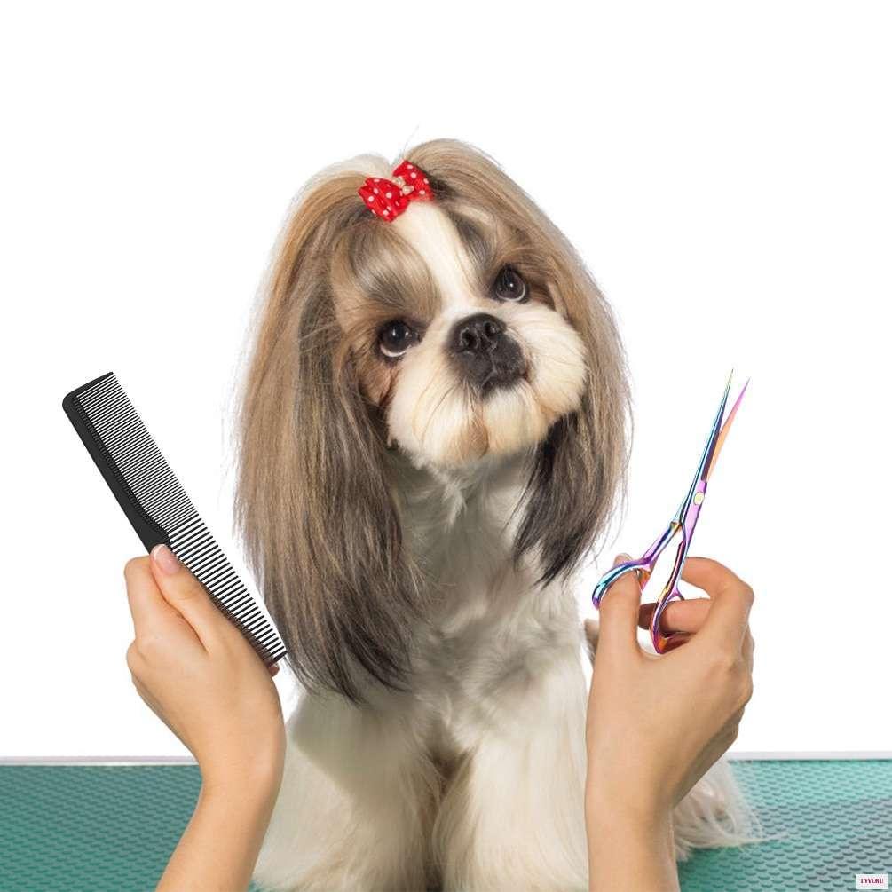 Как называют парикмахера для животных. парикмахер для собак – что это за профессия. что входит в обязанности грумера