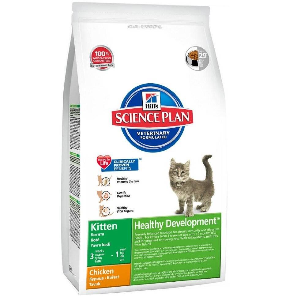 Корм Хиллс для кошек: состав ветеринарного лечебного кормления