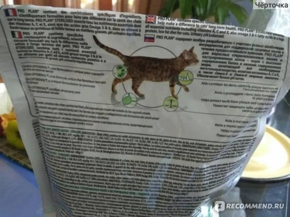 Корм феликс для кошек - 125 фото и видео разбор состава бюджетного корма