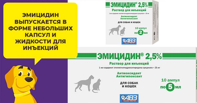 Эмицидин для кошек: инструкция по применению, фармакологические свойства, отзывы, аналоги