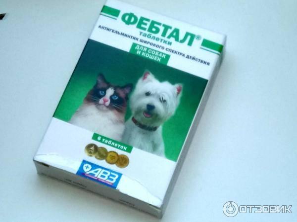 Фебтал для собак: показания и инструкция по применению, отзывы, цена