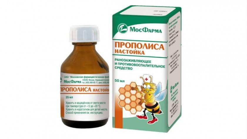 """Сальмонеллез собак и кошек -  симптомы и лечение в москве. ветеринарная клиника """"зоостатус"""""""
