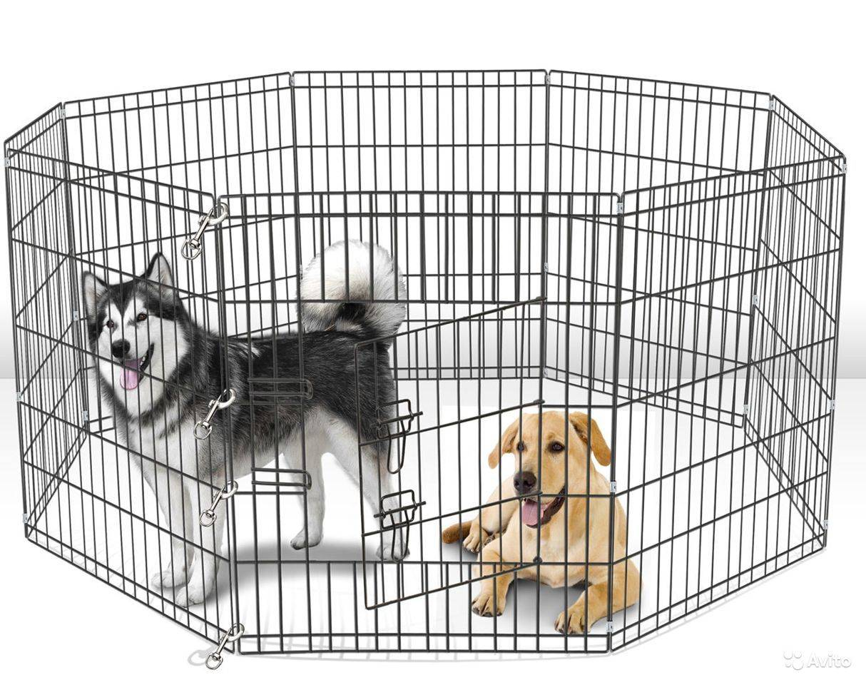 Нужна ли собаке клетка в квартире