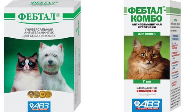 Фебтал для собак: инструкция по применению, описание препарата