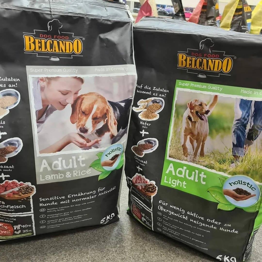 Рейтинг влажных кормов для собак – лидеры в 8 категориях