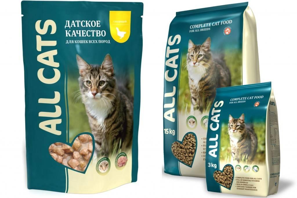 Лучший корм эконом-класса для кошек: рейтинг, обзор лучших, составы, советы по выбору