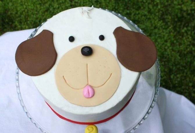 Как приготовить торт на именины собаки - wikihow
