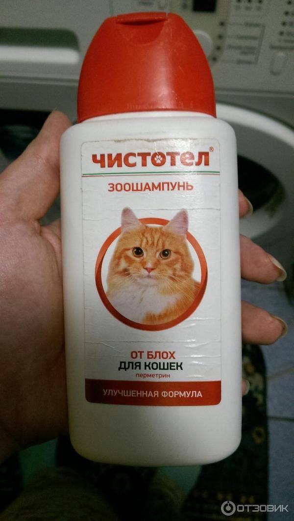 Шампунь от блох для кошек: обзор лучших и средние цены по россии русский фермер
