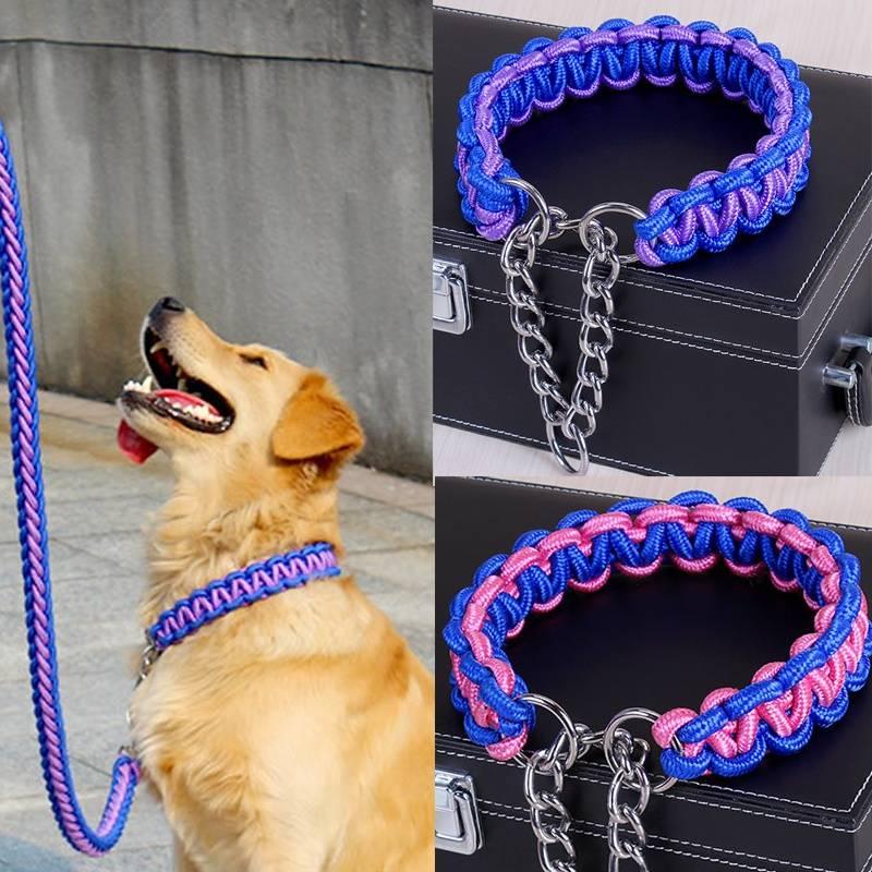Ошейник для собаки своими руками: простая инструкция