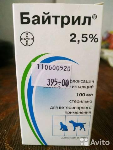 Байтрил инструкция по применению для кошек: дозировка, отзывы, стоимость, аналоги в ветеринарии