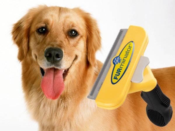 Фурминаторы для собак: принцип действия, критерии выбора и основная информация