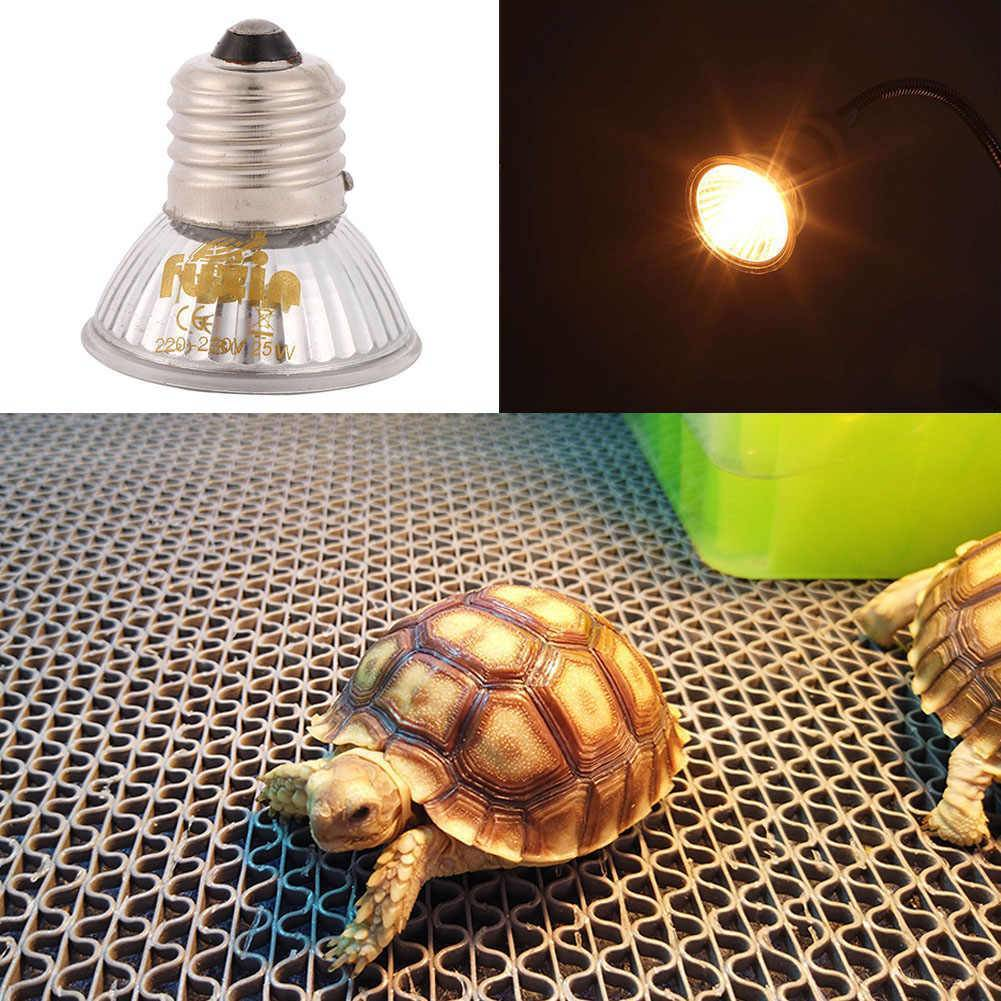 Какие лампы нужны для черепах в домашних условиях?