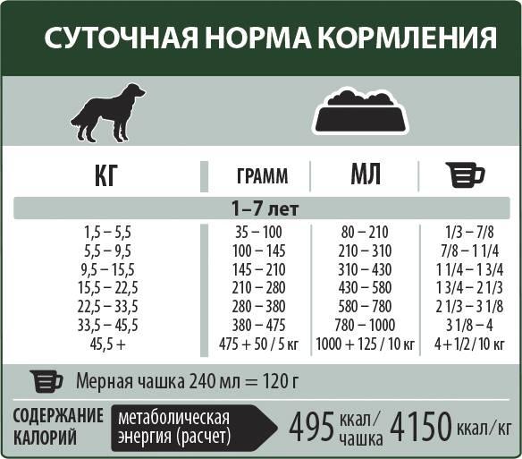 Сколько корма давать собаке в день: расчет суточной порции для взрослых животных и щенков, общие рекомендации, таблицы