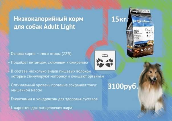 Органикс (organix) - корм для кошек: цена, отзывы, состав